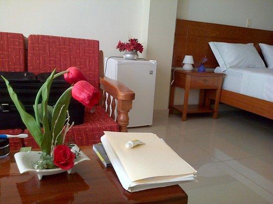 Hotel Del Castillo Plaza:                   frigobar vacio y desconectado