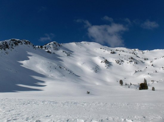 Cornucopia Lodge: Great area for backcountry skiing!
