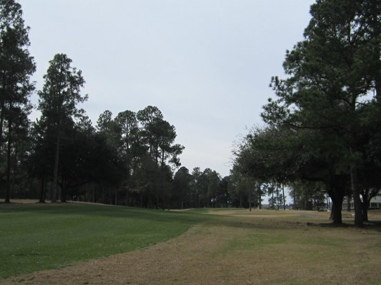 Lake Marion Golf Course:                   1st fairway & very playable rough