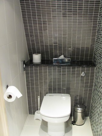 Harington's City Hotel: Toilet side of bathroom, room 11