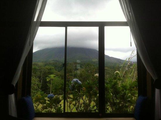 هوتل كامبو فيردي:                   View from inside our cabin                 