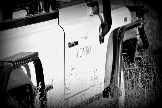 Wilderness Safaris Mombo Camp:                   Open Aired Land Rover used @ mombo
