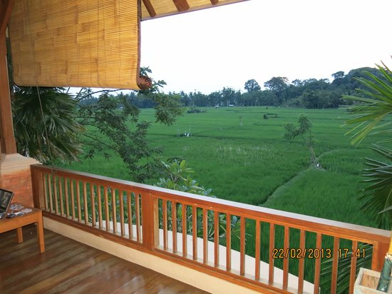 Tegal Sari:                   view ke sawah