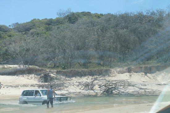 crossing eli creek at high tide 75 mile beach picture. Black Bedroom Furniture Sets. Home Design Ideas