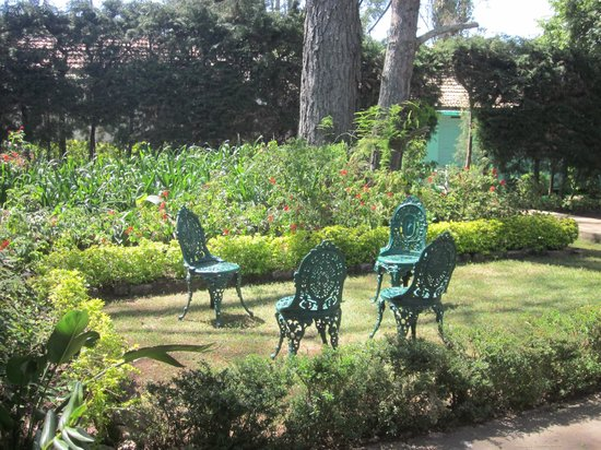 Neemrana's - Wallwood Garden: Hotel grounds