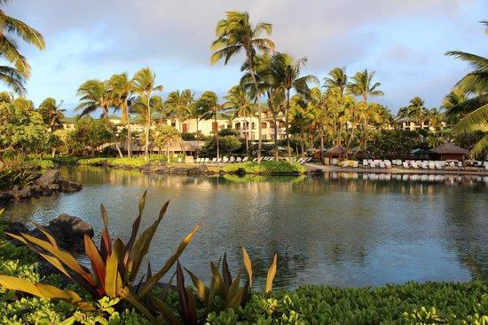 Grand Hyatt Kauai Resort & Spa :                   Saltwater Lagoon