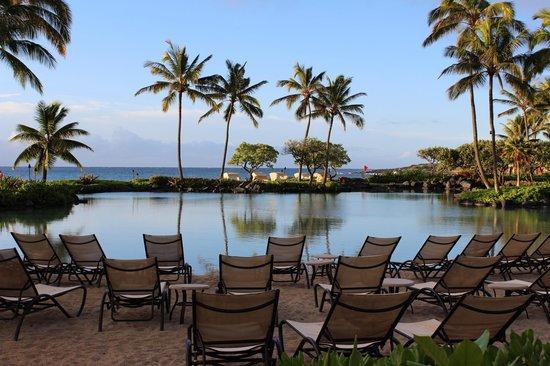 Grand Hyatt Kauai Resort & Spa :                   Saltwater Lagoon & Ocean