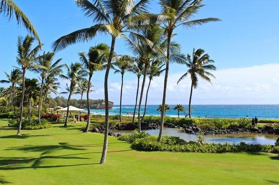 Grand Hyatt Kauai Resort and Spa:                   Room View