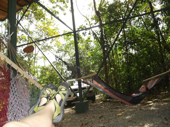 Tree Houses Hotel Costa Rica:                   hanging in the hammocks
