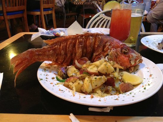 Red Snapper Picture Of Catch Of The Day Miami Tripadvisor