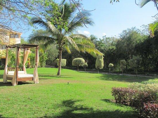 Grand Palladium Vallarta Resort & Spa:                   the area outside our patio door