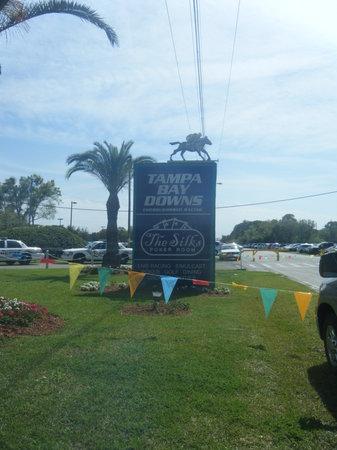 Tampa Bay Downs:                   entrance