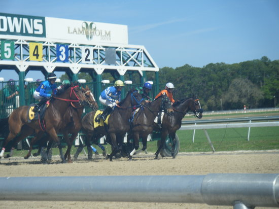 Tampa Bay Downs:                   out of the gates