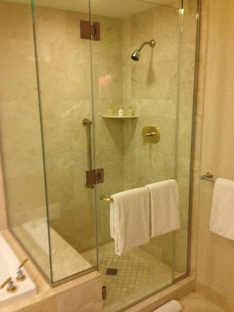 Wynn Las Vegas:                   Shower