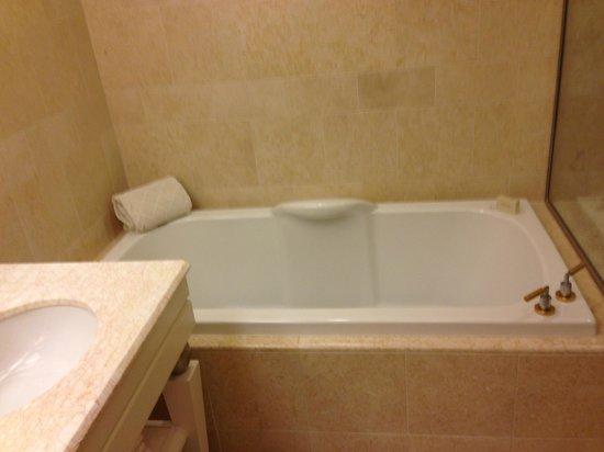 Wynn Las Vegas:                   Tub