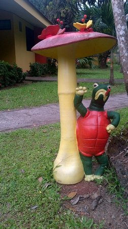 Arenal Country Inn:                   Turtle