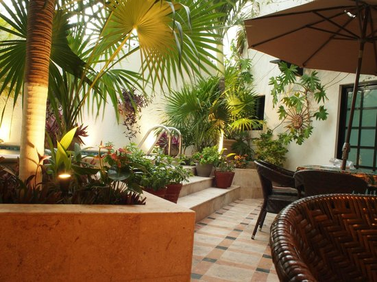 Casa Sirena Hotel:                   The courtyard and breakfast area.