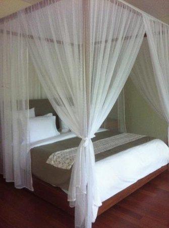 Alila Ubud:                                     treetop villa