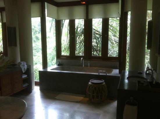 โรงแรมอลีลา อุบุด:                                     treetop villa