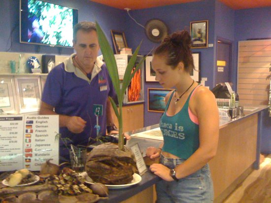 Daintree Discovery Centre:                                     front desk