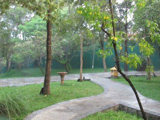 โรงแรมอมายา เลค:                                     Lovely pathway amid mother nature.