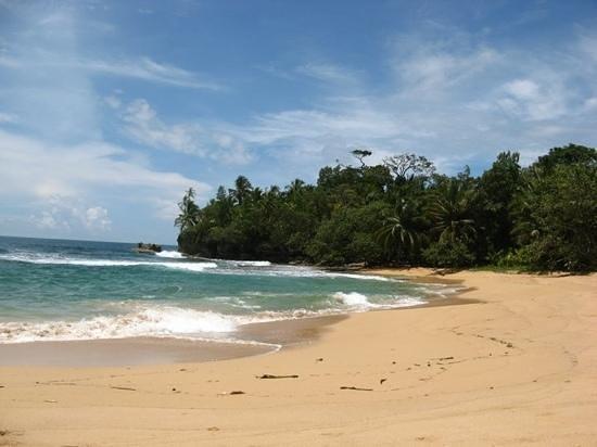 Hostel La Buena Onda :                   playa bluff