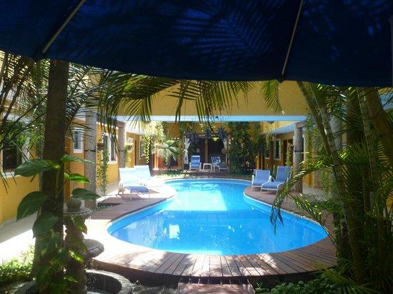 Hotel Las Golondrinas:                   la pileta principal y el pulmon del hotes