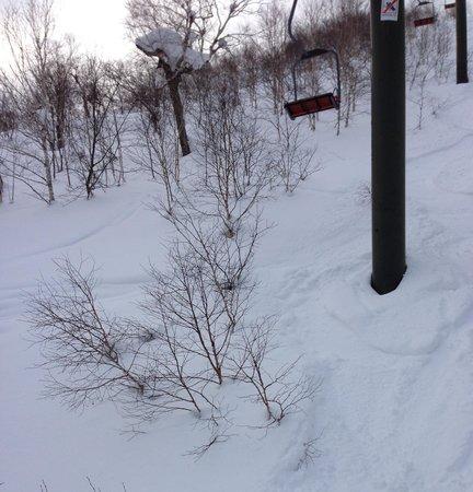 Sahoro Resort Ski Place :                   RIFTsita