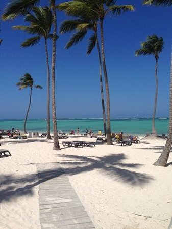 Barcelo Bavaro Beach - Adults Only: looks like paradise