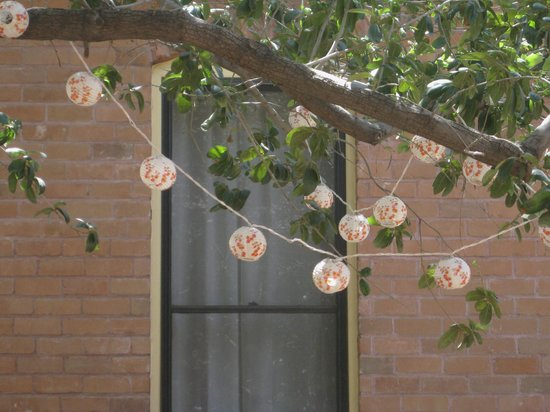 Nobuo at Teeter House: Japanese Lanterns-outside