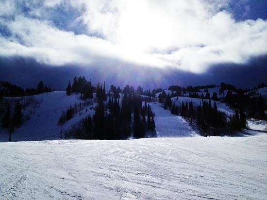 Snowbasin Resort: mid mountain