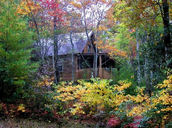 Cabins at Seven Foxes: Raccoon Loft (2 bedroom, 1 bath)