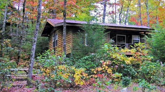 Cabins at Seven Foxes: Squirrel Nest (2 bedroom, 1 bath)