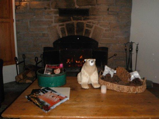 Polar Bear's Club: la reception