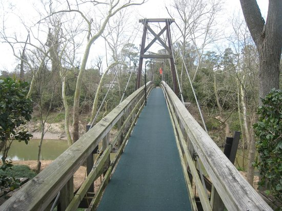 Bayou Bend Collection and Gardens :                   The susoension bridge