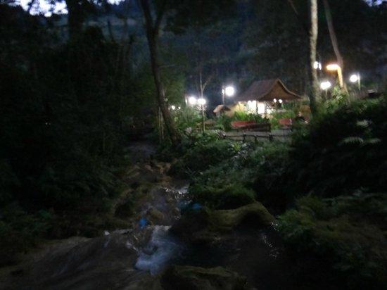 Camping Tad Thong:                   Restaurant at night