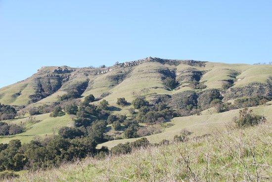 Sunol Regional Wilderness:                   landscape view