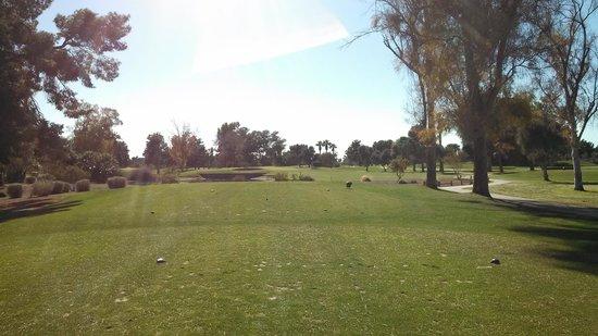 Wigwam Golf Resort:                                     Hole 11