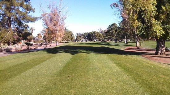 Wigwam Golf Resort:                                     Hole 12