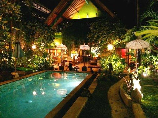 Green Chaka Villas :                   Pool and Garden