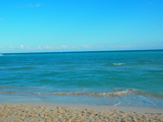 Hotel Riu Tequila:                                     beach                                  