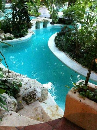 La Tortuga Hotel & Spa:                   Выход из номера к бассейну