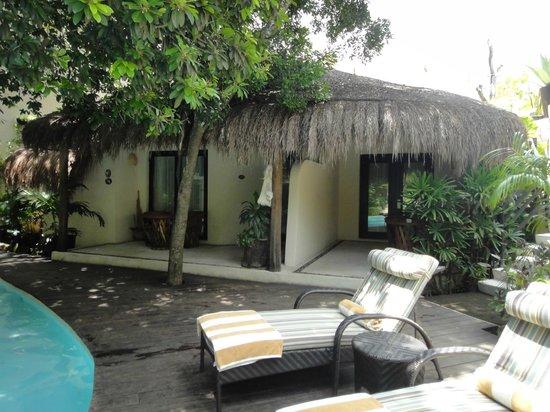 La Tortuga Hotel & Spa:                   разные типы номеров