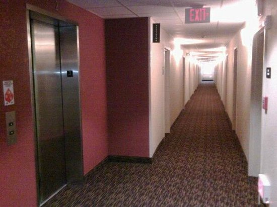 Extended Stay America - Miami - Airport - Doral - 87th Avenue South: PASILLOS