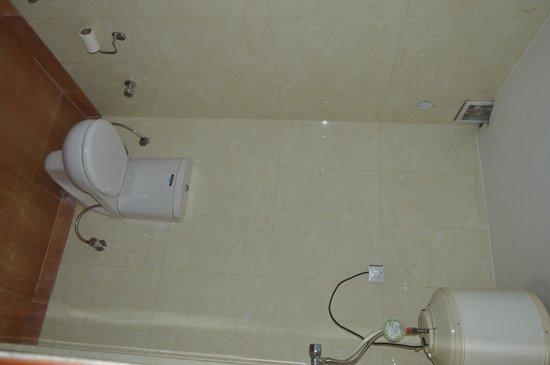 Hotel Preet Palace: TOILET