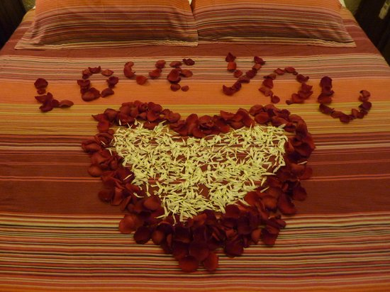 Casa Flamboyan:                   Rose petals