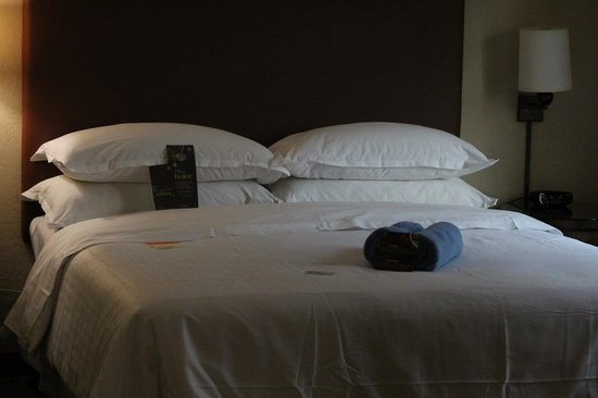 Sheraton Old San Juan Hotel: room