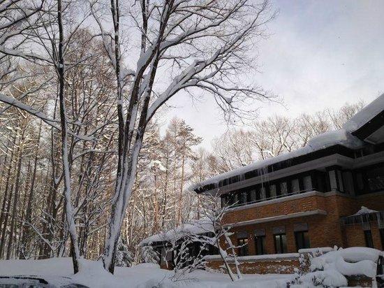 Hakuba Resort Hotel La Neige Higashikan: Suited inside a lovely woods