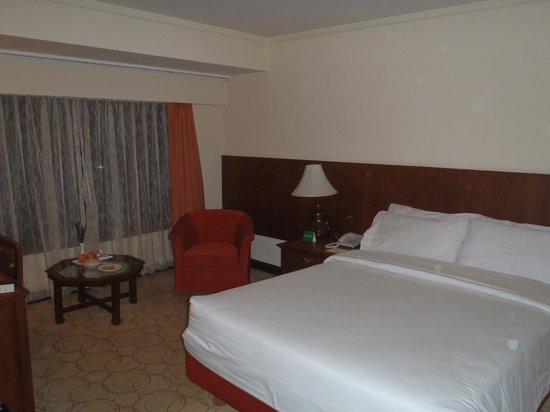 Hotel Annapurna:                   客室