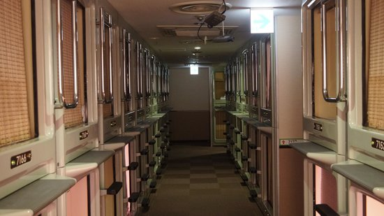 Shinjuku Kuyakushomae Capsule Hotel:                   the dorm space:you have to crawl in and the privacy is assured by the slide cu